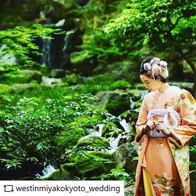 ウエスティン都ホテルさまの撮影でスタイリングさせていただきました。inoriちゃんです。かわいいですー。#REPOST  @westinmiyakokyoto_wedding with @get_repost__app #westinmiyakowedding・急斜面を活かしたデザインの葵殿庭園。京都の庭師・小川治兵衛が手がけました。まるで山のように背景がグリーン一色になるので、和装も洋装も美しく撮れます。・Aoiden garden designed by Jihei Ogawa, a gardener from Kyoto, features this steep hill.Photo taken in this spot will be perfect both in Japanese style and in dress・・ #repostw10
