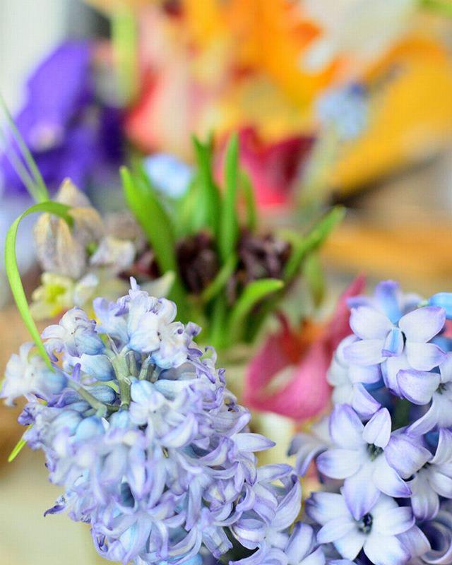 先日の撮影終わりに頂いたお花。最後まできれいに咲いてくれてます。ありがとう。#ラブーシュカウエディング #ウエディングプランナー #群馬 #軽井沢 #ガーデンウエディング #高崎 #前橋 #伊勢崎 #桐生#コンセプトウエディング #花嫁 #プレ花嫁 #wedding #weddingdress #bride #結婚式 #オリジナルウエディング #会場装飾 #手作りアイテム #ウェディング #結婚式準備 #花嫁 #卒花 #ウエディングドレス #ウェディングドレス #ロケーションフォト #ゼクシィ #loveshka
