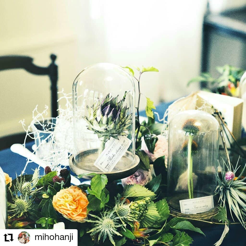 高砂〜!ダーウィン風#Repost @mihohanji• • • • • •「ボタニカル」をテーマに。裏タイトルは「ダーウィンの実験室」。植物は呼吸をしているので、ガラスドームに入れると曇る。#ボタニカル#エアープランツ#チランジア#フォトプロップス#wedding#判治ミホ#スタイリング#スタイリスト#ウエディング#会場装飾