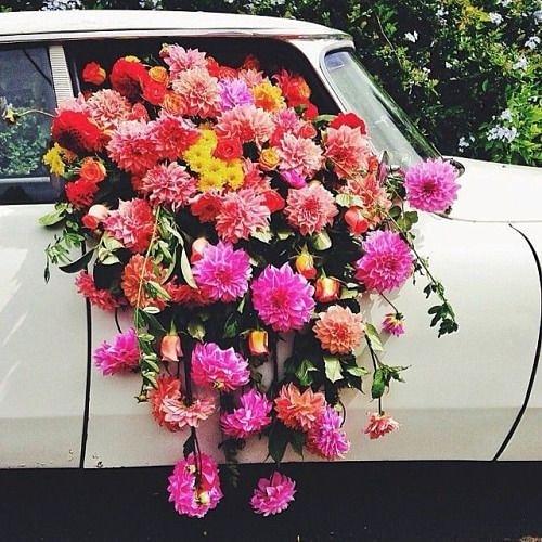 image...こういうのをやりたい#お花をたくさん使ったスタイリング#wedding#flowery#styling#スタイリスト判治ミホ#weddingphotography